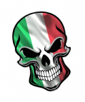 GOTHIC BIKER SKULL Italy Italian il Tricolore Flag With Motif External Vinyl Car Sticker 110x75mm